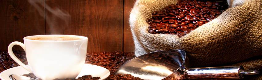 caffè modia